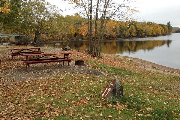 Campsite includes picnic table, fire ring and Continental Breakfast
