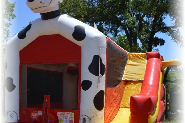 Dalmatian 5-in-1 Inflatable