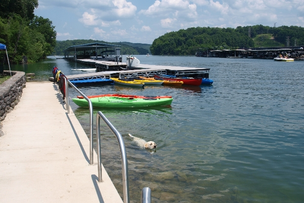 Norris Lake is magnificent body of water; clear, mellow and serene--warming to comfortable swimming temperatures in summer and flanked by a beautiful State Park and Wildlife Sanctuary