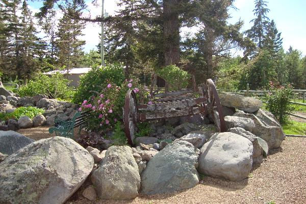 Part of the rock garden in the front of the house