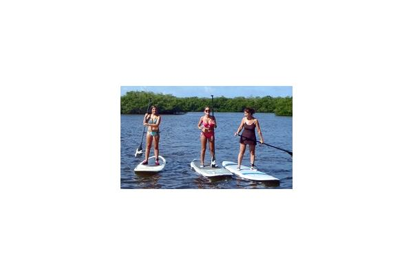 Stand up Paddleboard (SUP) rentals