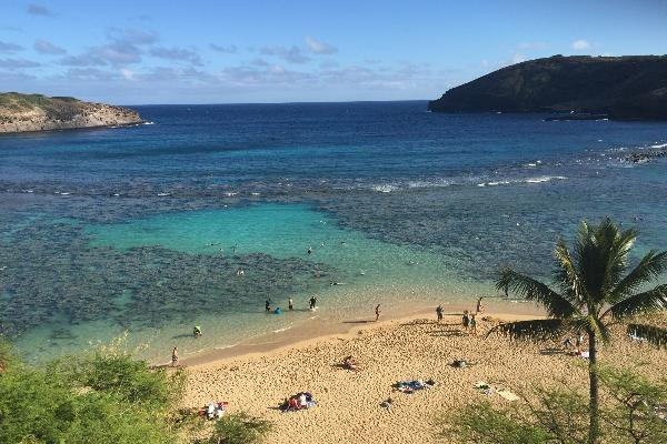 Hanauma Bay snorkel beach