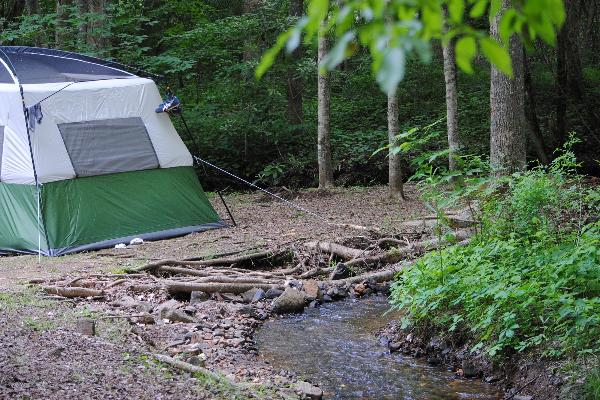 Creekside Tent Site T5
