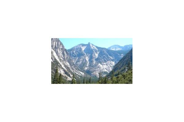 Sequoia Sightseeing Tours Inc