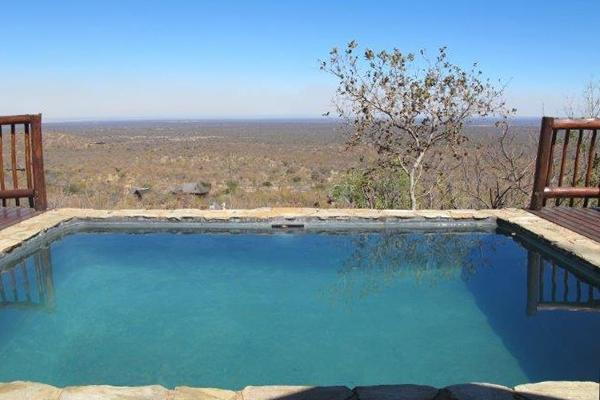 Swimming pool overlook unspoiled African bush